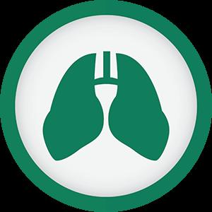pulmonologiya